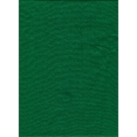 SystemPro 10'x 20' Chromakey Green Background Solid Color Muslin image