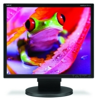 NEC Display MultiSync EA191M-BK LCD Monitor image