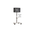 Chief MFC-UB Black Universal Rolling Cart for Flat Panel Displays
