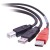 Cables To Go USB 2.0 Y-Cable