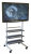 Wilson WFP100 Flat Panel Stand -- Holds Most 32