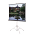 Da-Lite Picture King Portable Projection Screen