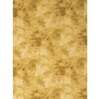Promaster Cloud Dyed Backdrop - 10'' x 20'' - Tan image