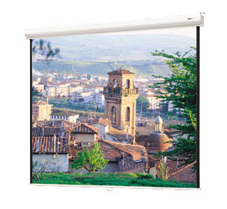 "DA-LITE 84""x 84"" Designer Contour Wall Screen"