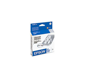 EPSON Ink Cartridge for R2400 - Light Black