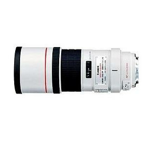 Canon EF 300mm f/4.0L IS USM Telephoto Lens