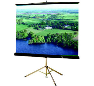 "Buhl T60 60""x60"" Tripod Projection Screen"