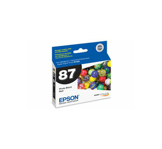 Epson Ink Cartridge for 1900 Photo Black