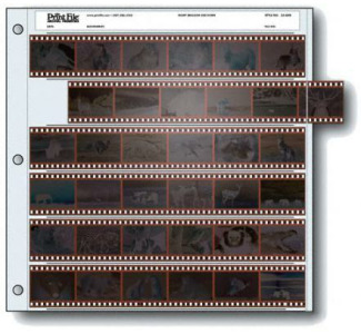 Print File  6-Strip Archival Storage Pages for 35mm Negatives - 25 Packs