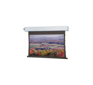 Advantage Electrol Projection Screen