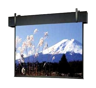 Da-Lite Professional Electrol Projection Screen