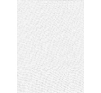 Promaster Solid Studio Backdrop 10'x12' - White