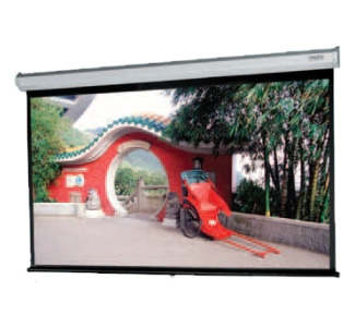 Da-Lite Model C Projection Screen
