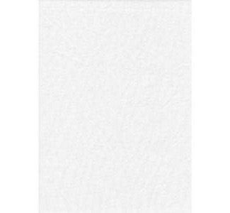 Promaster Solid Backdrop - 6'' x 10'' - White